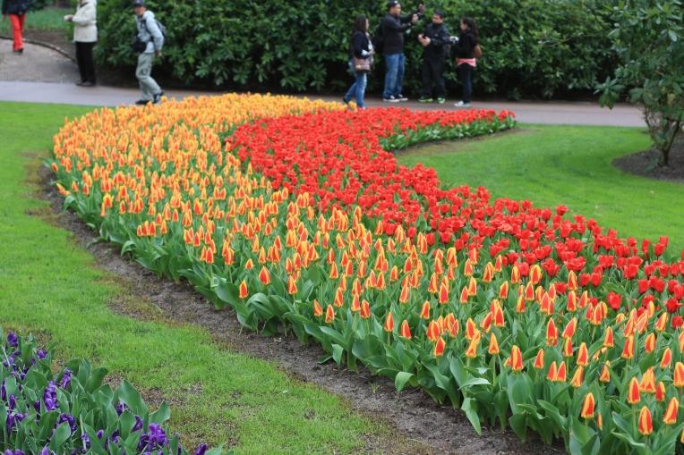 Die Außenanlagen waren in tollen Formen mit Tulpen und anderen Ziebelblumen bepflanzt.