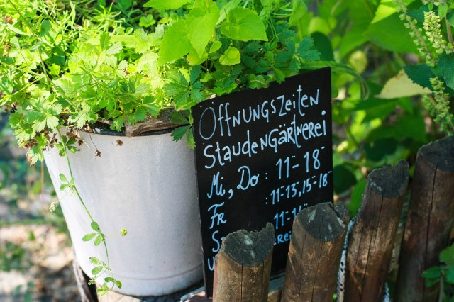 Im Prinzessinnengarten können Sie auch Pflanzen kaufen.