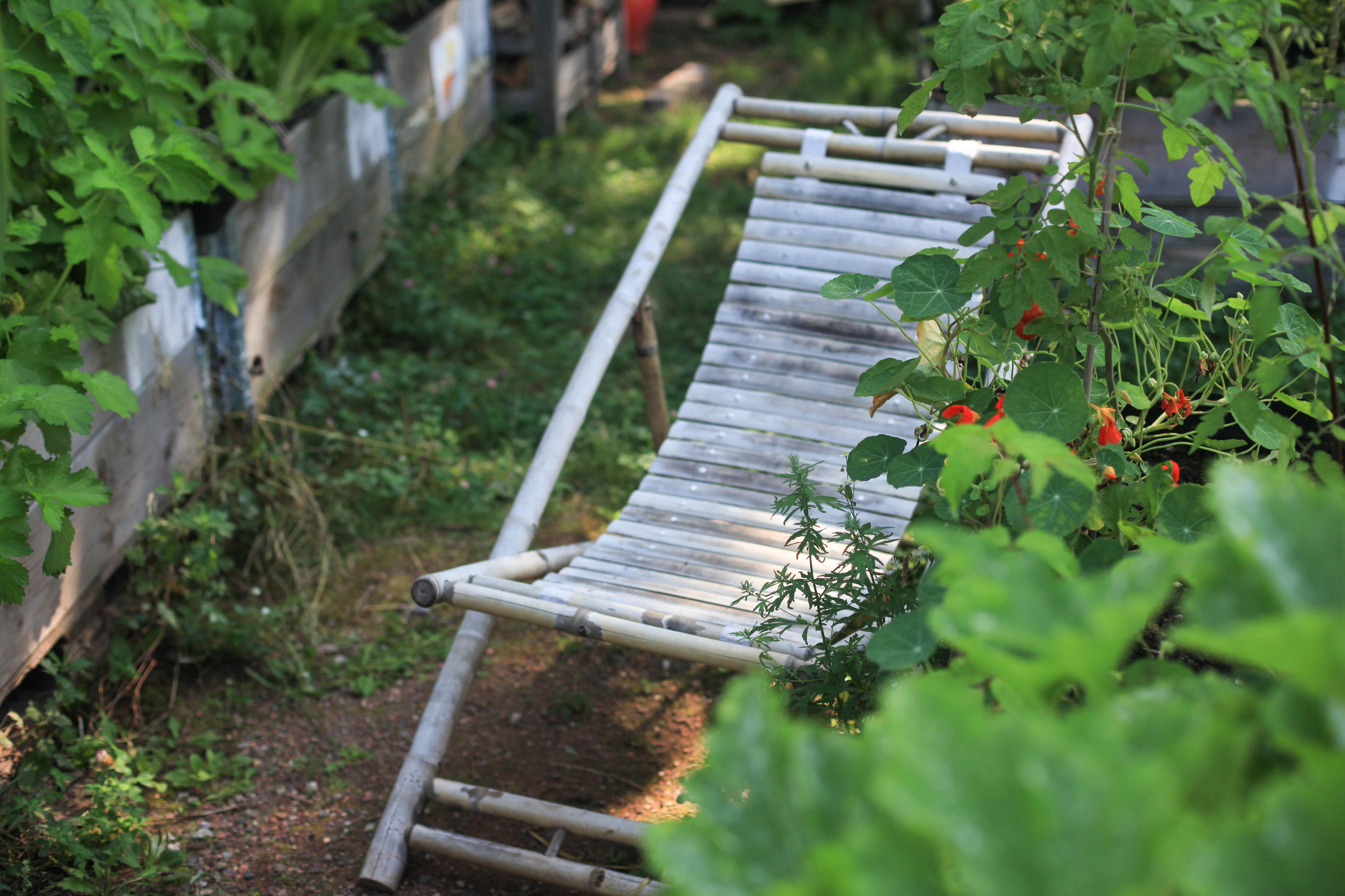 Entspannungsmöglichkeiten zwischen Tomaten und Kräutern.