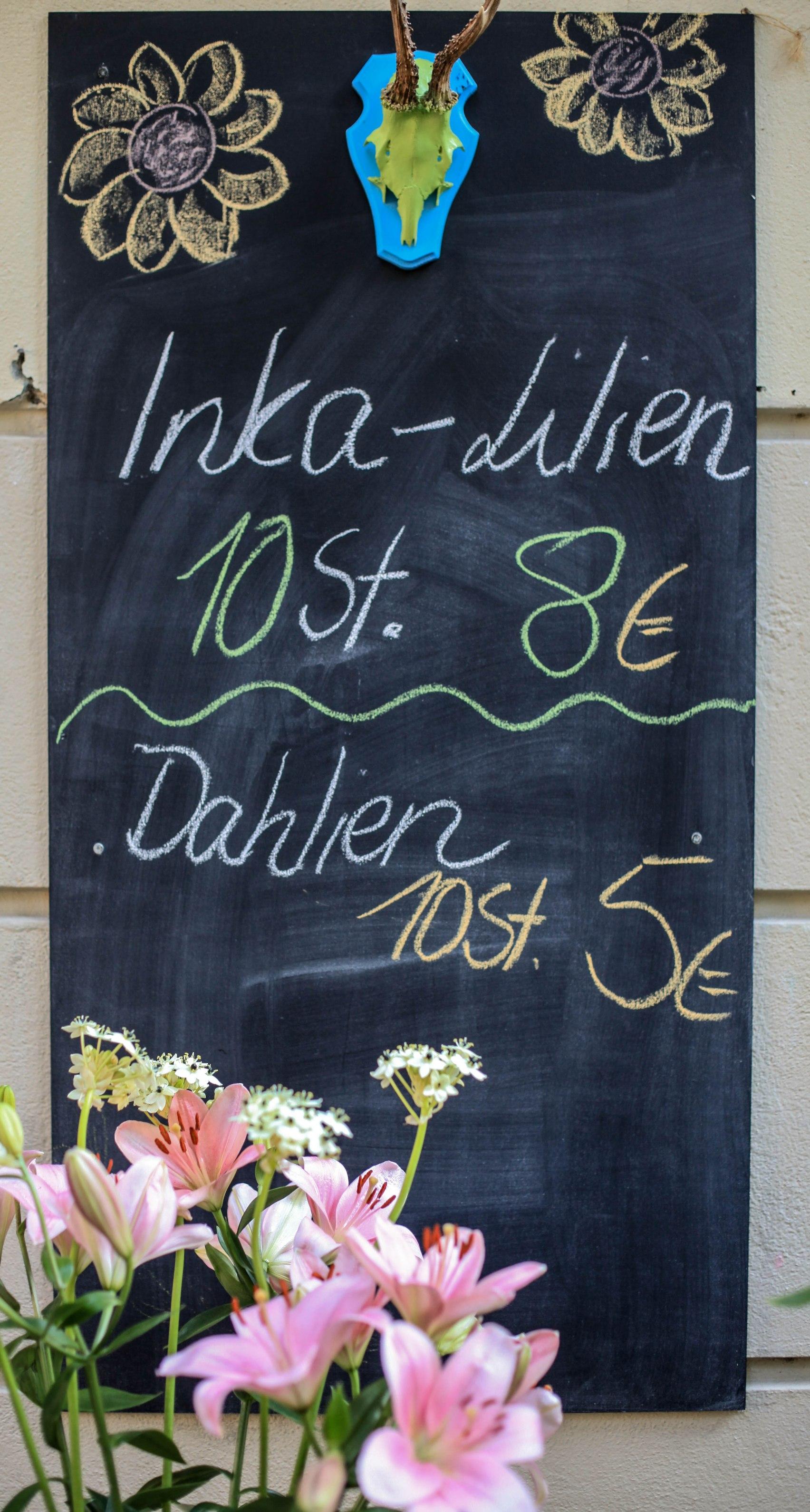 Zehn Inka-Lilien für acht Euro.