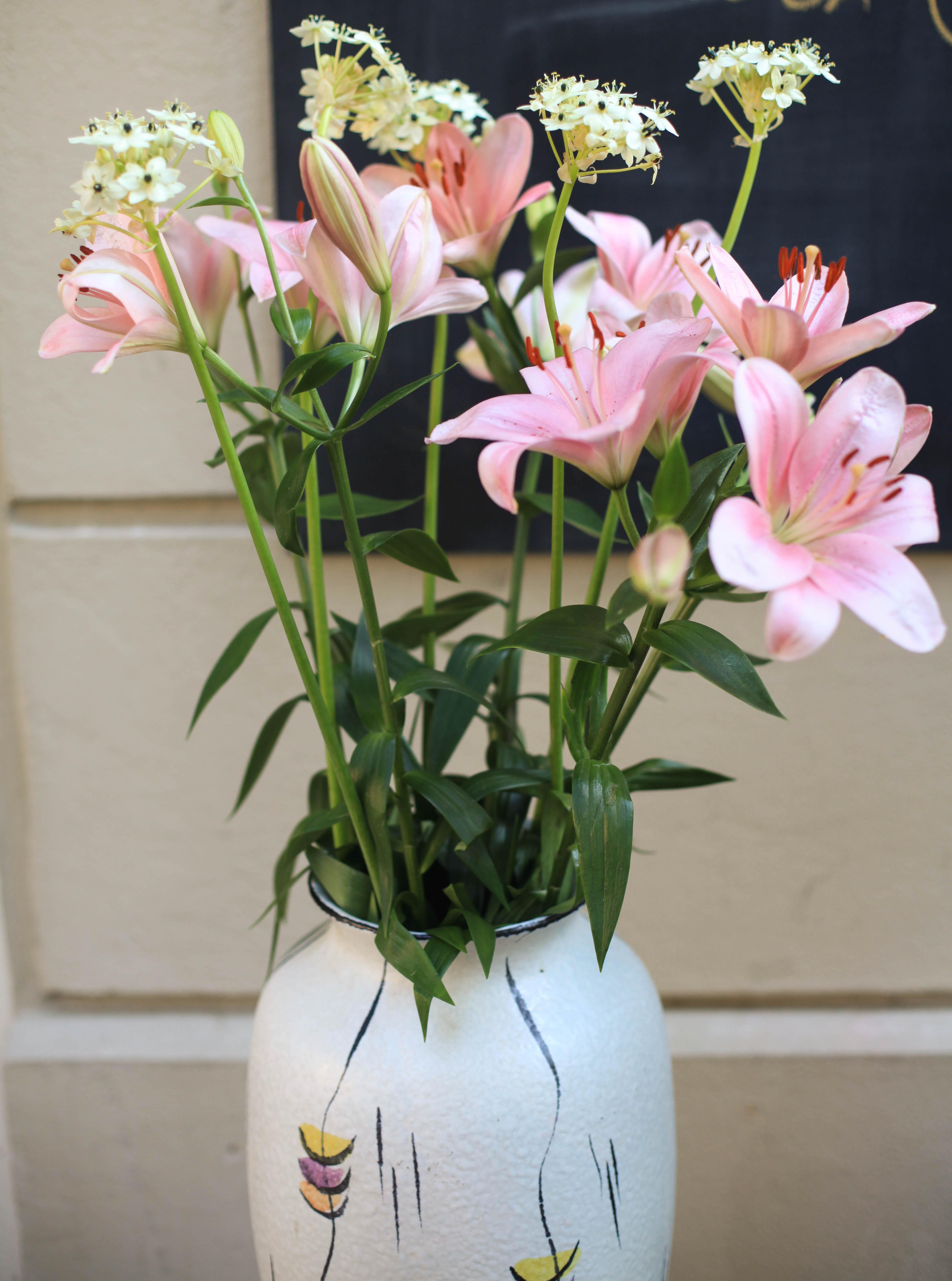 Rosa Lilien. Traumblüten!