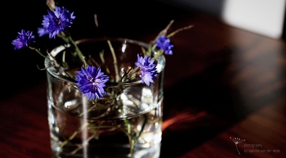 Das Herbstlicht bricht sich im Glas mit den Kornblumen.